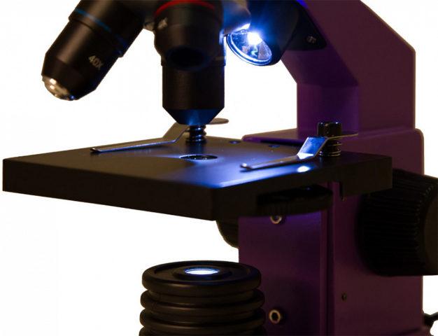 Микроскоп: как выбрать, лучшие фирмы, рейтинг моделей, отзывы